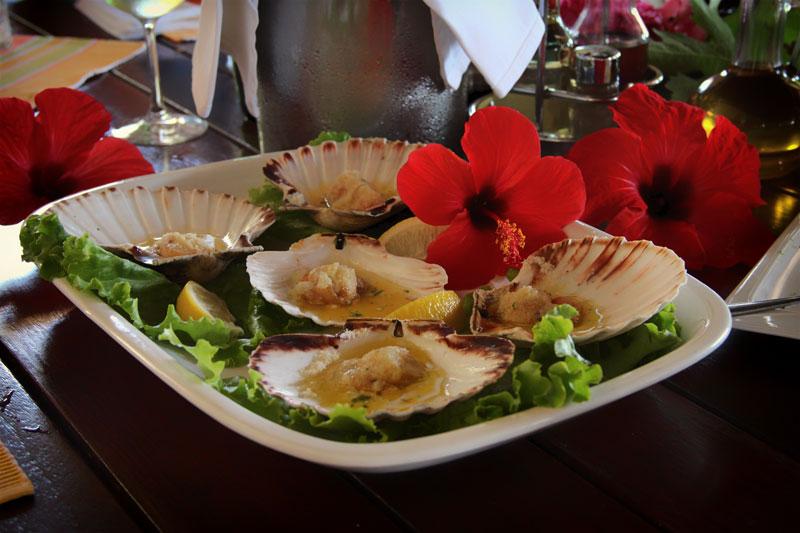 Restoran Skalinada školjke